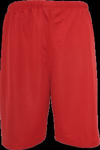 Baseball Mesh Short scarlet