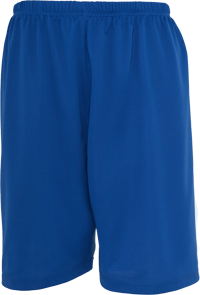 Baseball Mesh Short royal